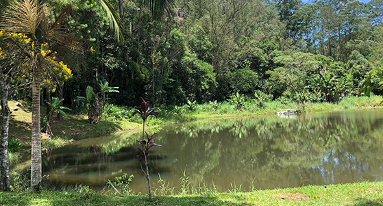 Lago Fábrica Fontágua